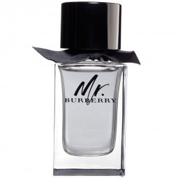 Burberry Mr. Burberry 100 ml